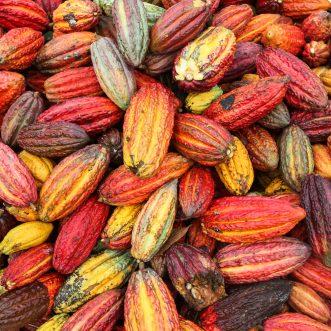 l'économie du Bénin : overview